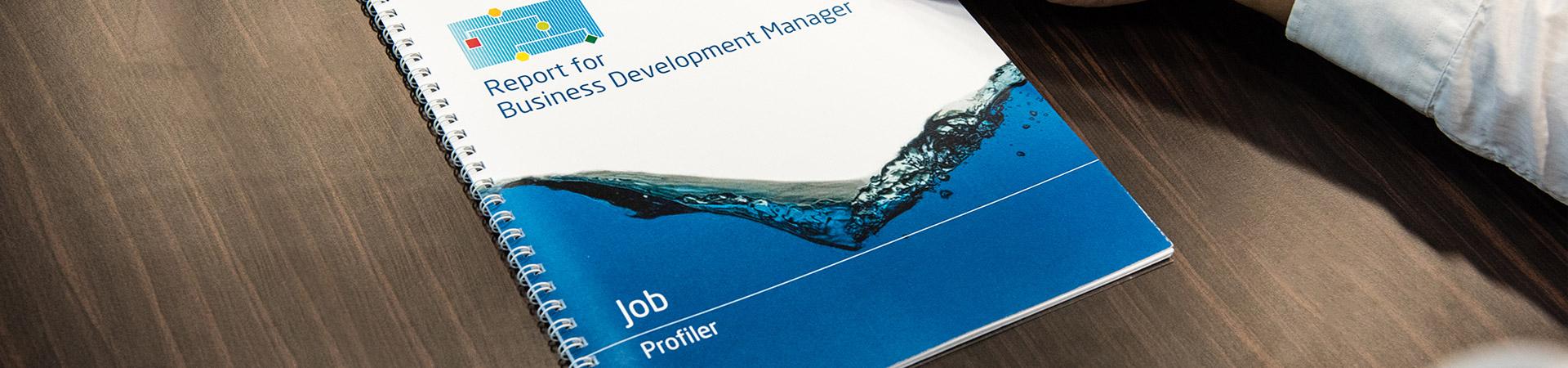 Wave Job Profiler Report Header