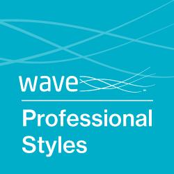 Professional Styles logo